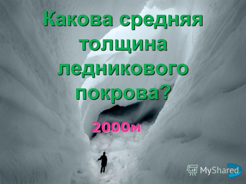 Какова средняя толщина ледникового покрова? 2000 м