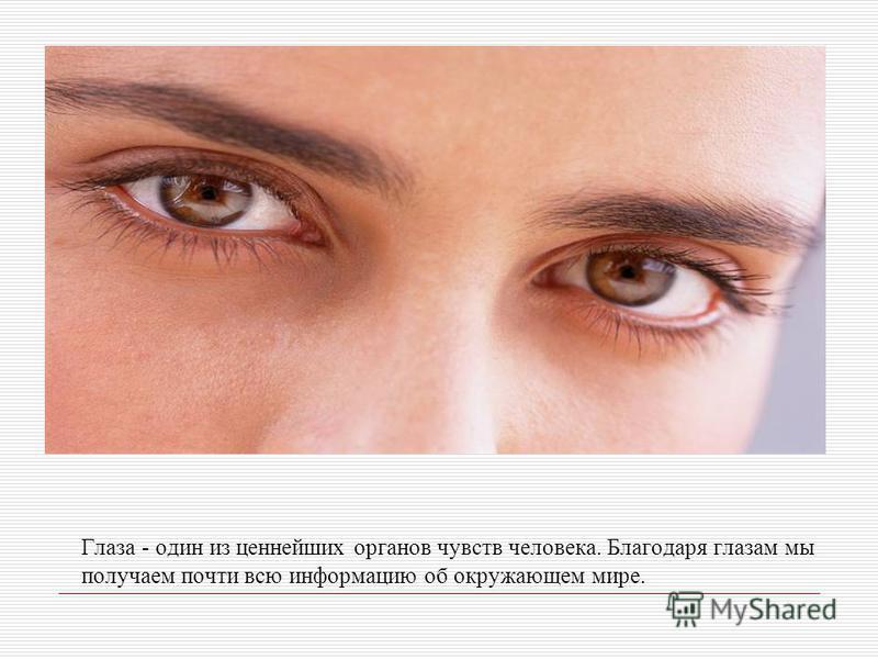 Глаза - один из ценнейших органов чувств человека. Благодаря глазам мы получаем почти всю информацию об окружающем мире.