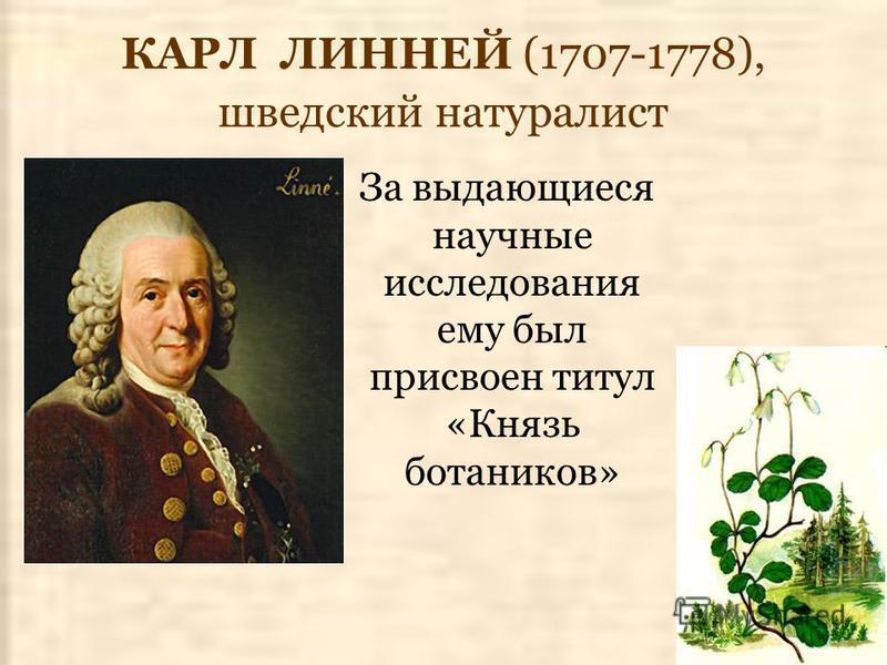 КАРЛ ЛИННЕЙ (1707-1778), шведский натуралист За выдающиеся научные исследования ему был присвоен титул «Князь ботаников»
