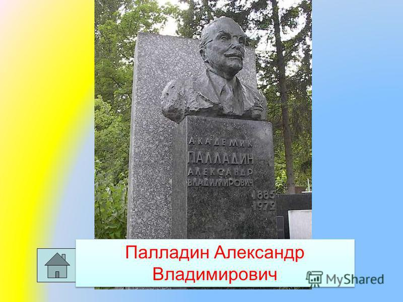 Палладин Александр Владимирович