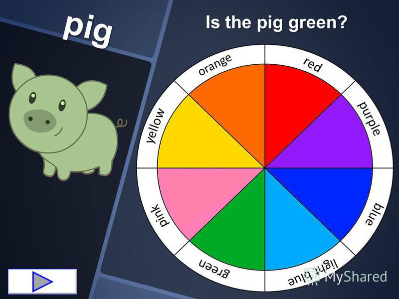 pig Is the pig green?