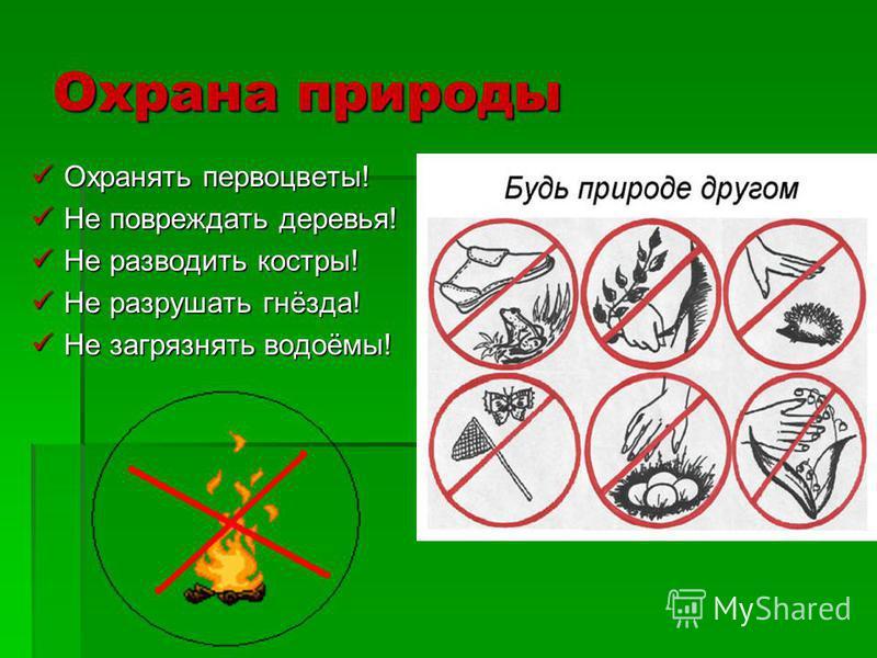 Охрана природы Охранять первоцветы! Охранять первоцветы! Не повреждать деревья! Не повреждать деревья! Не разводить костры! Не разводить костры! Не разрушать гнёзда! Не разрушать гнёзда! Не загрязнять водоёмы! Не загрязнять водоёмы!