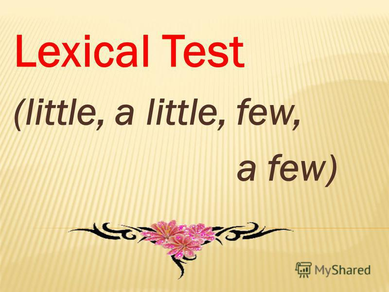 Lexical Test (little, a little, few, a few)