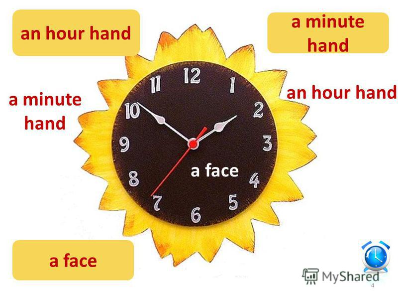 an hour hand a minute hand a face an hour hand a minute hand a face a minute hand an hour hand 4
