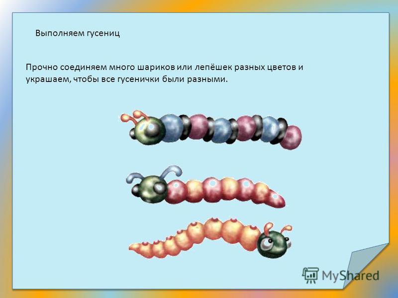 Выполняем гусениц Прочно соединяем много шариков или лепёшек разных цветов и украшаем, чтобы все гусенички были разными.