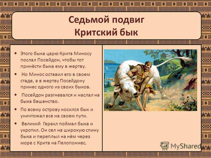 Седьмой подвиг Критский бык Этого быка царю Крита Миносу послал Посейдон, чтобы тот принёсти быка ему в жертву. Но Минос оставил его в своем стаде, а в жертву Посейдону принес одного из своих быков. Посейдон разгневался и наслал на быка бешенство. По
