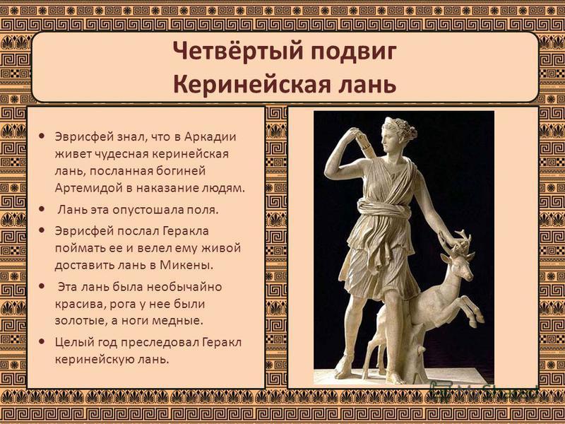 Четвёртый подвиг Керинейская лань Эврисфей знал, что в Аркадии живет чудесная керинейская лань, посланная богиней Артемидой в наказание людям. Лань эта опустошала поля. Эврисфей послал Геракла поймать ее и велел ему живой доставить лань в Микены. Эта