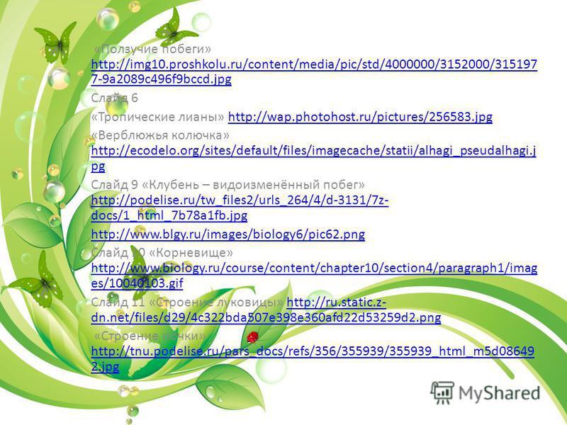 «Ползучие побеги» http://img10.proshkolu.ru/content/media/pic/std/4000000/3152000/315197 7-9a2089c496f9bccd.jpg http://img10.proshkolu.ru/content/media/pic/std/4000000/3152000/315197 7-9a2089c496f9bccd.jpg Слайд 6 «Тропические лианы» http://wap.photo