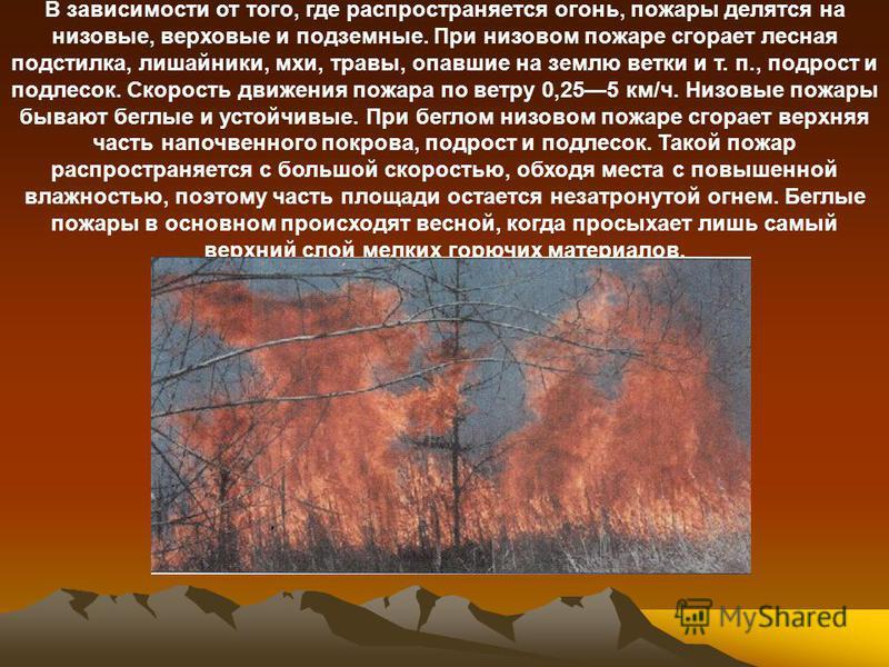 В зависимости от того, где распространяется огонь, пожары делятся на низовые, верховые и подземные. При низовом пожаре сгорает лесная подстилка, лишайники, мхи, травы, опавшие на землю ветки и т. п., подрост и подлесок. Скорость движения пожара по ве