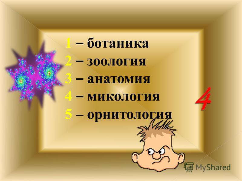1 -- Алиса 2 – Элли 3 – Мальвина 4 – Дюймовочка 5 – Синеглазка