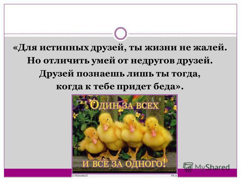 «Для истинных друзей, ты жизни не жалей. Но отличить умей от недругов друзей. Друзей познаешь лишь ты тогда, когда к тебе придет беда».