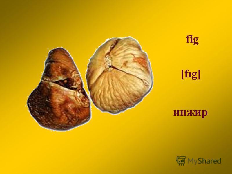 fig [fıg] инжир