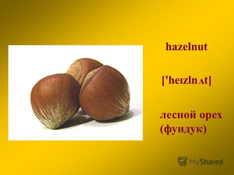 hazelnut лесной орех (фундук) ['heızln t] v