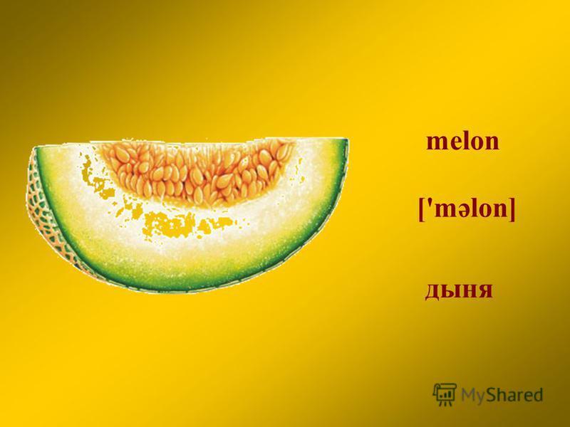 melon дыня ['məlon]