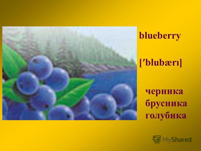 blueberry [blubærı] черника брусника голубика