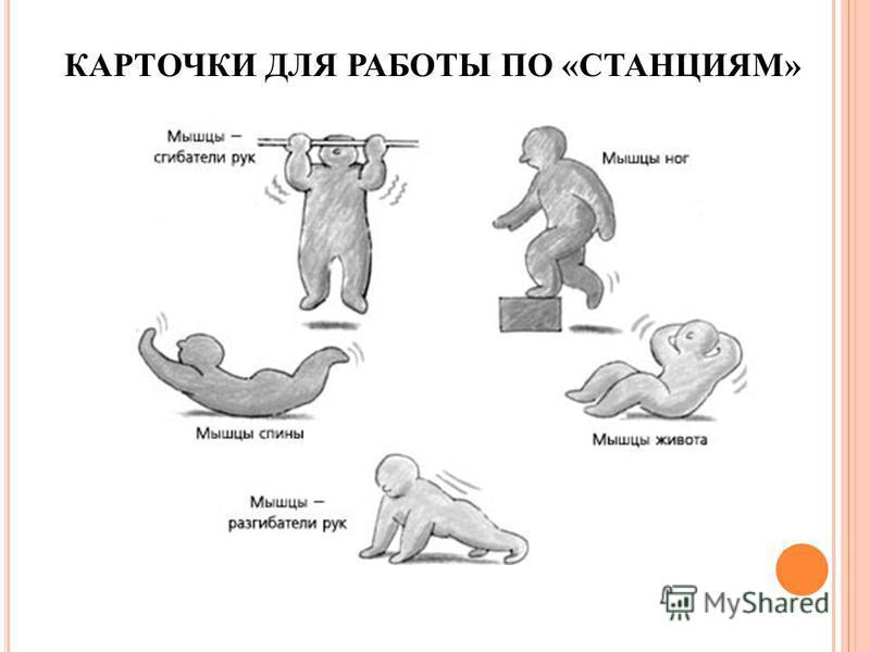 КАРТОЧКИ ДЛЯ РАБОТЫ ПО «СТАНЦИЯМ»