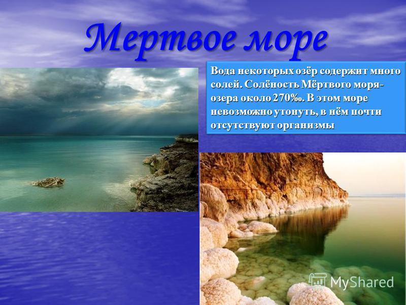 Мертвое море Вода некоторых озёр содержит много солей. Солёность Мёртвого моря- озера около 270. В этом море невозможно утонуть, в нём почти отсутствуют организмы