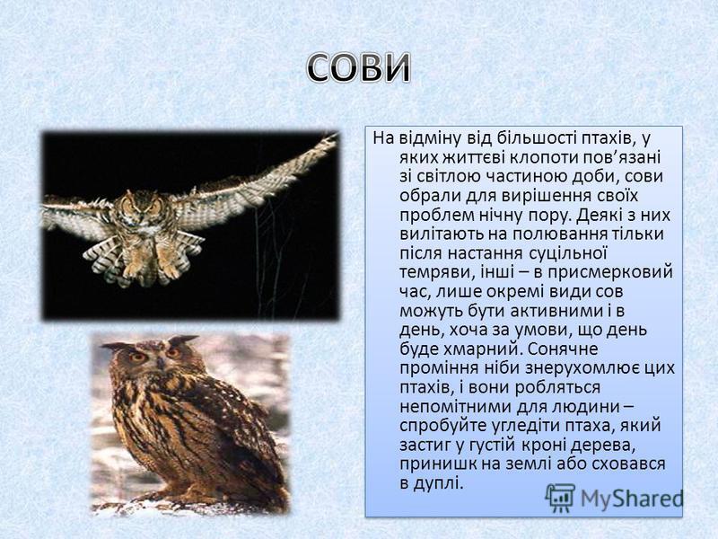Один з 4 видів роду; єдиний вид роду у фауні України, представлений 2 підвидами: типовим А. F. funereus (зх. області), А. f. саuсаsicus (Крим). Можливо, гніздяться ізольовані популяції в Українських Карпатах; узимку зрідка зустрічається в Полтавській