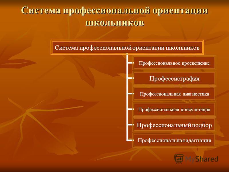 Система профессиональной ориентации школьников Профессиональное просвещение Профессиография Профессиональная диагностика Профессиональная консультация Профессиональный подбор Профессиональная адаптация