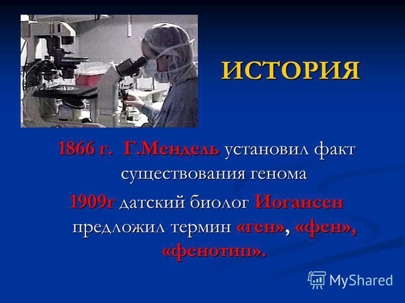 ИСТОРИЯ ИСТОРИЯ 1866 г. Г.Мендель установил факт существования генома 1909 г датский биолог Иогансен предложил термин «ген», «фен», «фенотип».