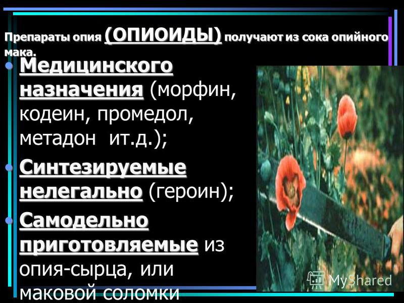 Препараты опия (ОПИОИДЫ) получают из сока опийного мака. Медицинского назначения Медицинского назначения (морфин, кодеин, промедол, метадон ит.д.); Синтезируемые нелегально Синтезируемые нелегально (героин); Самодельно приготовляемые Самодельно приго