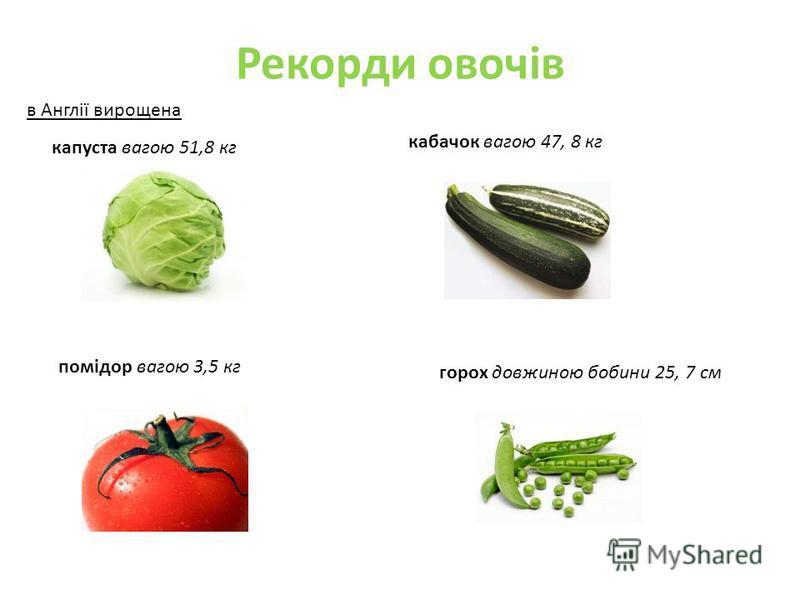 Рекорди овочів в Англії вирощена капуста вагою 51,8 кг кабачок вагою 47, 8 кг помідор вагою 3,5 кг горох довжиною бобини 25, 7 см