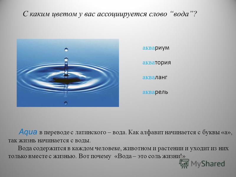 С каким цветом у вас ассоциируется слово вода? аквариум акватория акваланг акварель Aqua в переводе с латинского – вода. Как алфавит начинается с буквы «а», так жизнь начинается с воды. Вода содержится в каждом человеке, животном и растении и уходит