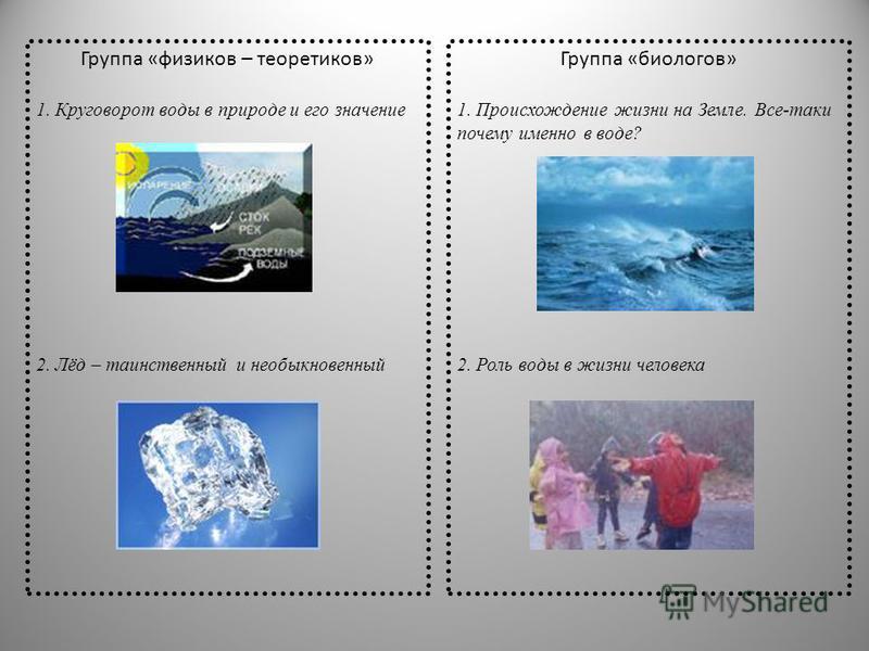 Группа «физиков – теоретиков» 1. Круговорот воды в природе и его значение 2. Лёд – таинственный и необыкновенный Группа «биологов» 1. Происхождение жизни на Земле. Все-таки почему именно в воде? 2. Роль воды в жизни человека