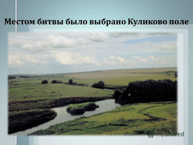 Местом битвы было выбрано Куликово поле