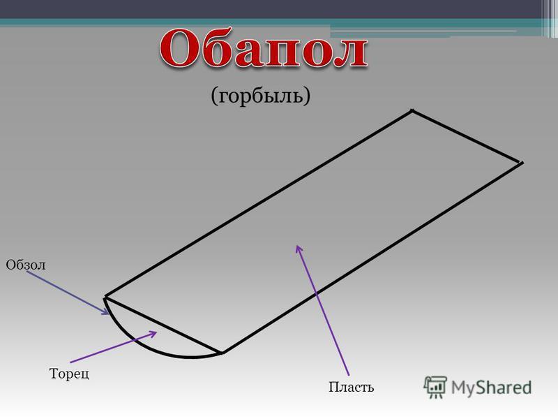 Пласть Торец (горбыль) Обзол
