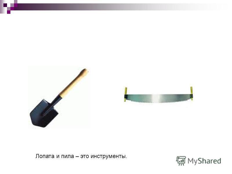 Лопата и пила – это инструменты.