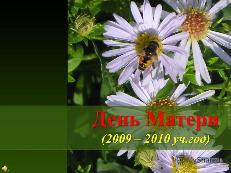 День Матери (2009 – 2010 уч.год)