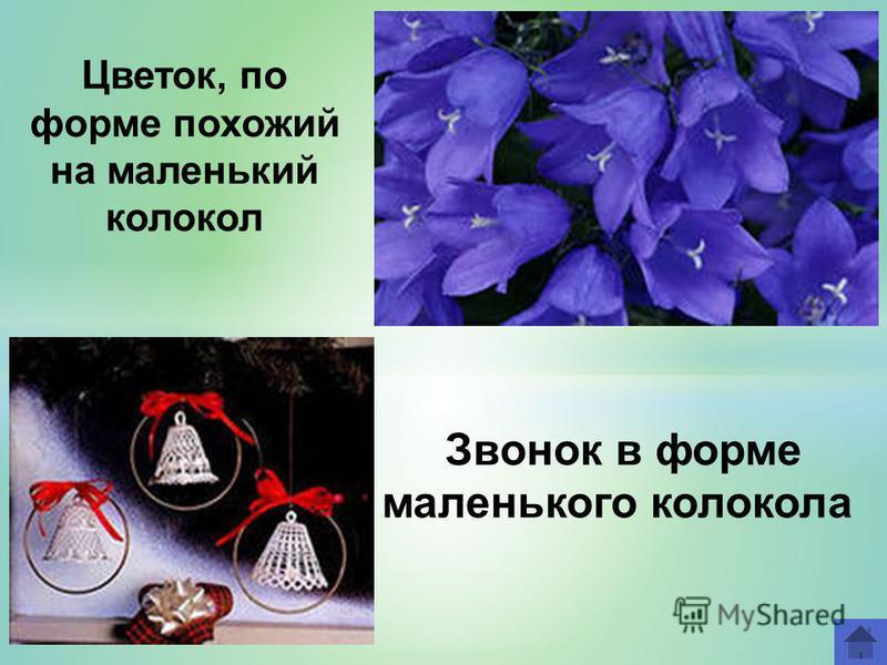 Звонок в форме маленького колокола Цветок, по форме похожий на маленький колокол