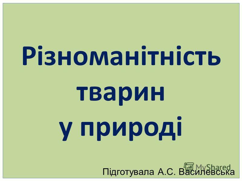 Різноманітність тварин у природі Підготувала А.С. Василевська
