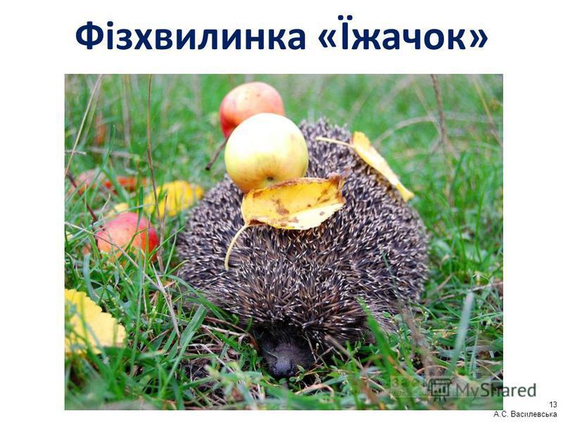 Фізхвилинка «Їжачок» 13 А.С. Василевська