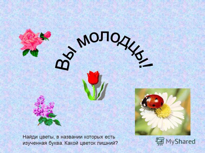 Найди цветы, в названии которых есть изученная буква. Какой цветок лишний?
