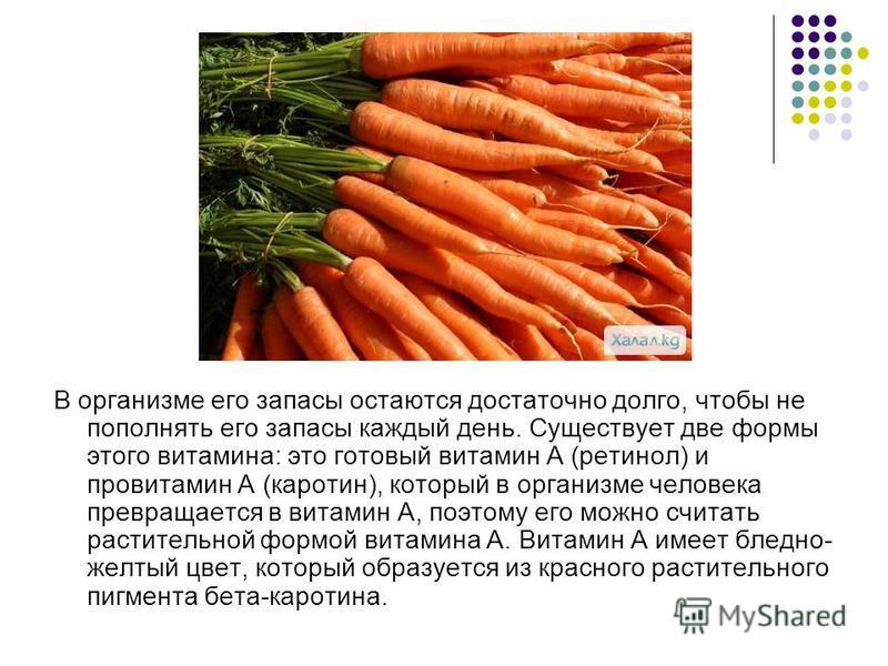 В организме его запасы остаются достаточно долго, чтобы не пополнять его запасы каждый день. Существует две формы этого витамина: это готовый витамин А (ретинол) и провитамин А (каротин), который в организме человека превращается в витамин A, поэтому