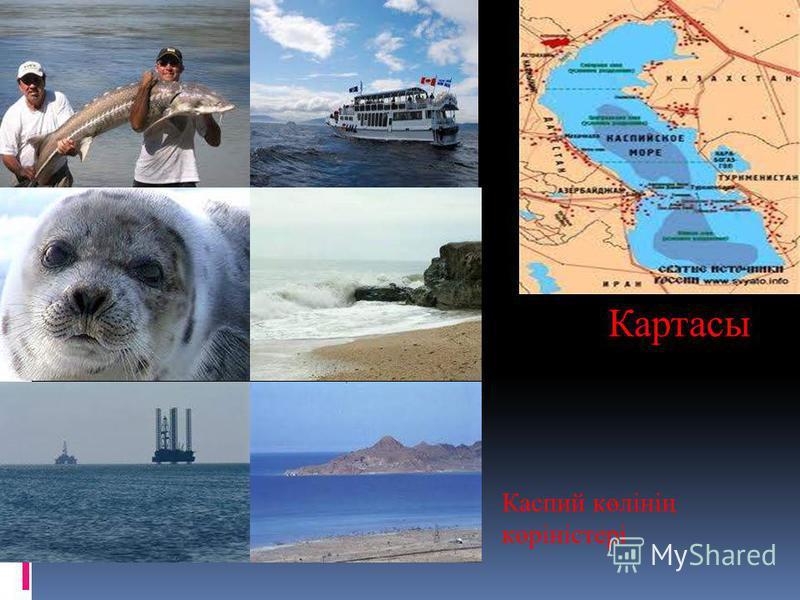 Картасы Каспий көлінің көріністері
