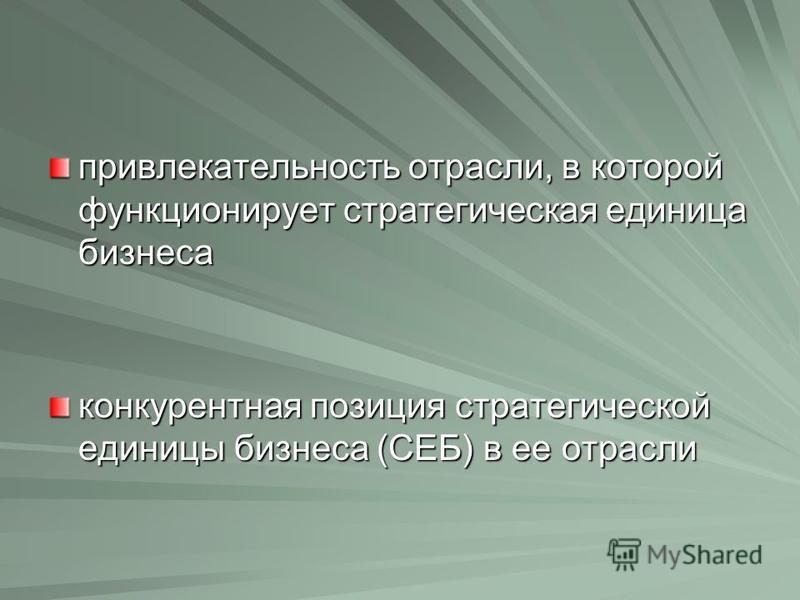 привлекательность отрасли, в которой функционирует стратегическая единица бизнеса конкурентная позиция стратегической единицы бизнеса (СЕБ) в ее отрасли