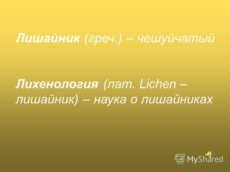 Лишайник (греч.) – чешуйчатый Лихенология (лат. Lichen – лишайник) – наука о лишайниках