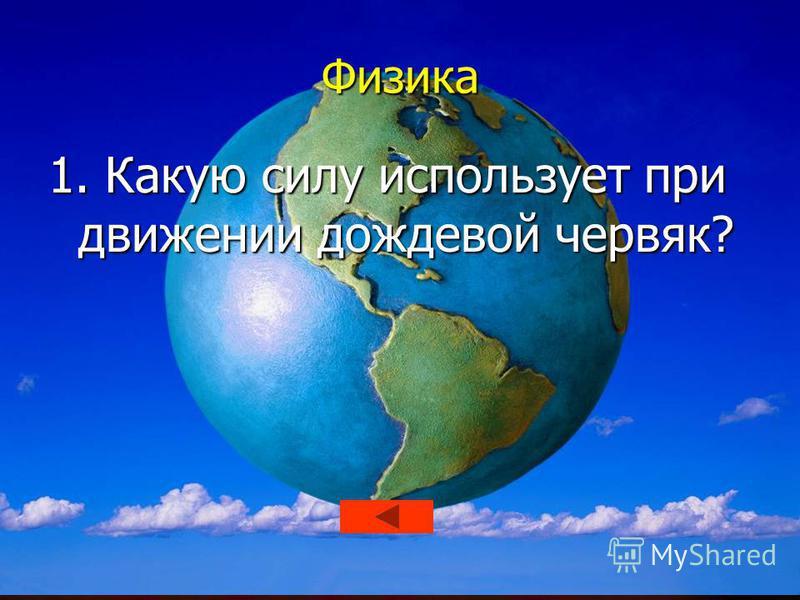 Математика 5. Как на Руси называли ученых-математиков?