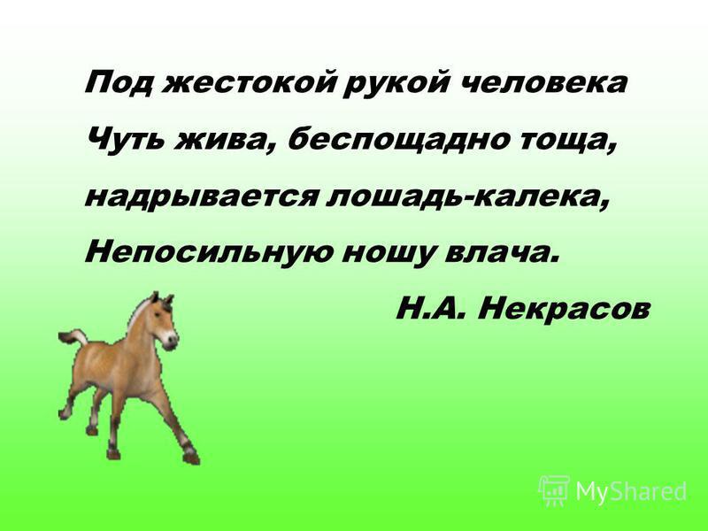 Под жестокой рукой человека Чуть жива, беспощадно тоща, надрывается лошадь-калека, Непосильную ношу влача. Н.А. Некрасов