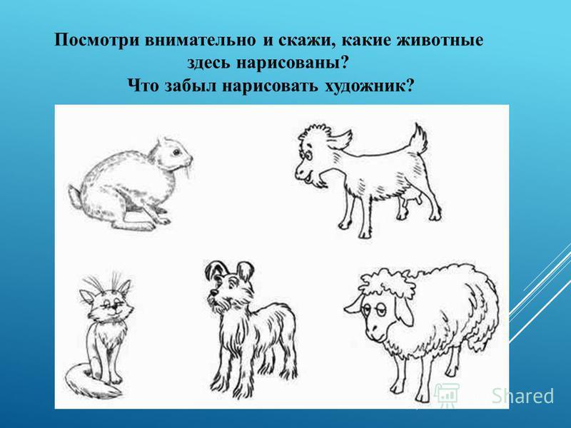 Посмотри внимательно и скажи, какие животные здесь нарисованы? Что забыл нарисовать художник?