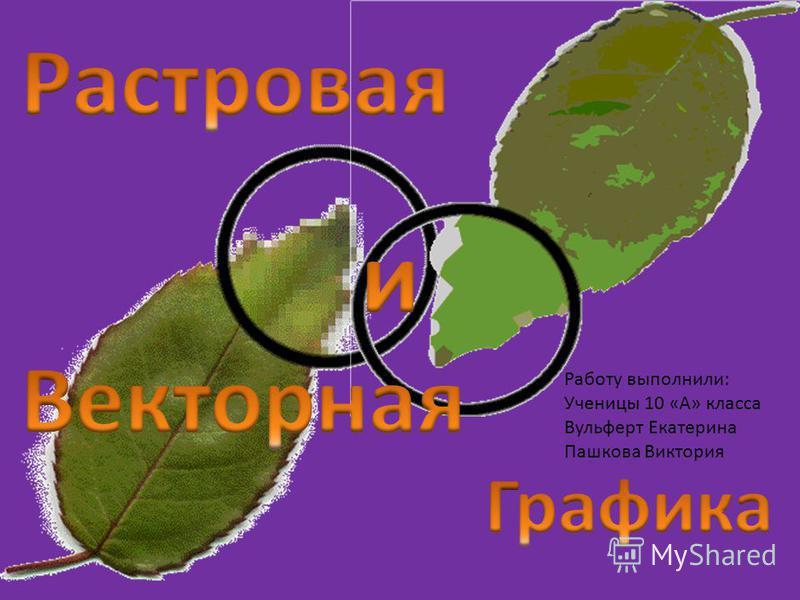 Работу выполнили: Ученицы 10 «А» класса Вульферт Екатерина Пашкова Виктория