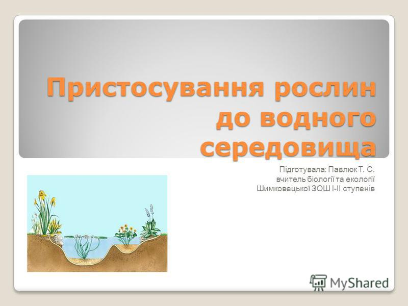 Пристосування рослин до водного середовища Підготувала: Павлюк Т. С. вчитель біології та екології Шимковецької ЗОШ І-ІІ ступенів