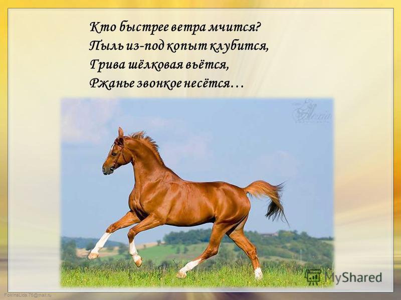FokinaLida.75@mail.ru Кто быстрее ветра мчится? Пыль из-под копыт клубится, Грива шёлковая вьётся, Ржанье звонкое несётся…