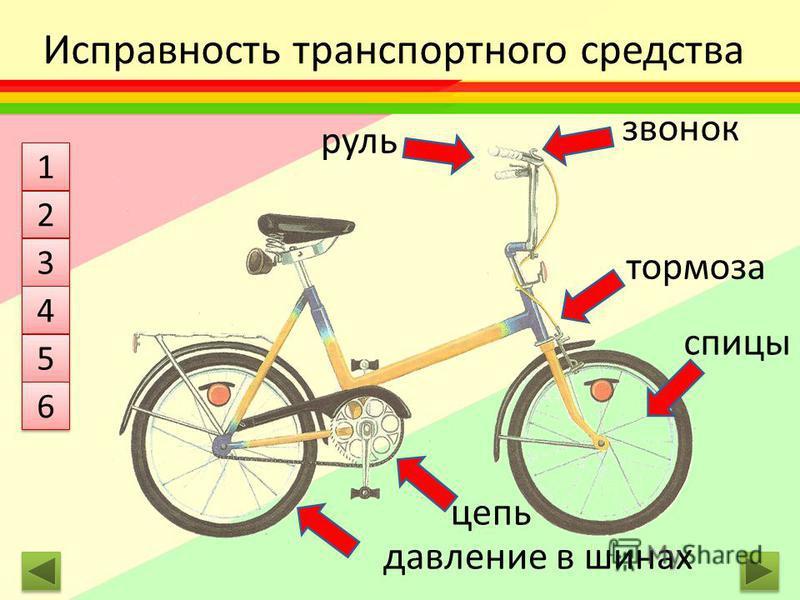 Исправность транспортного средства руль звонок тормоза спицы цепь давление в шинах 1 1 2 2 3 3 4 4 5 5 6 6