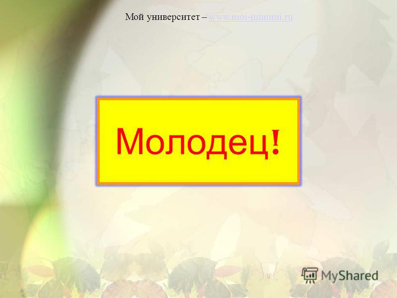 Молодец ! Мой университет – www.moi-mummi.ruwww.moi-mummi.ru