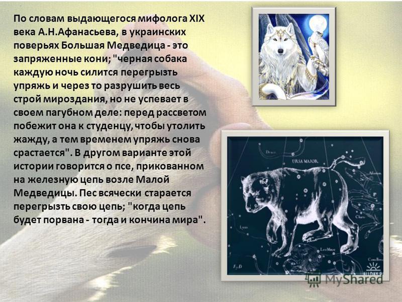По словам выдающегося мифолога XIX века А.Н.Афанасьева, в украинских поверьях Большая Медведица - это запряженные кони;