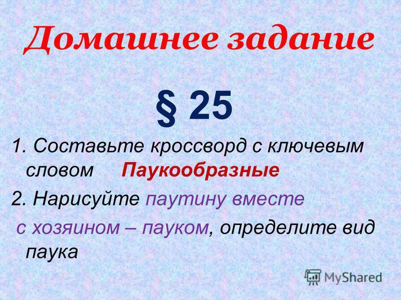 Домашнее задание § 25 1. Составьте кроссворд с ключевым словом Паукообразные 2. Нарисуйте паутину вместе с хозяином – пауком, определите вид паука